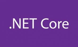 .net core 配置虚目录或虚应用程序